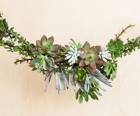 changeit Christmas succulent garland